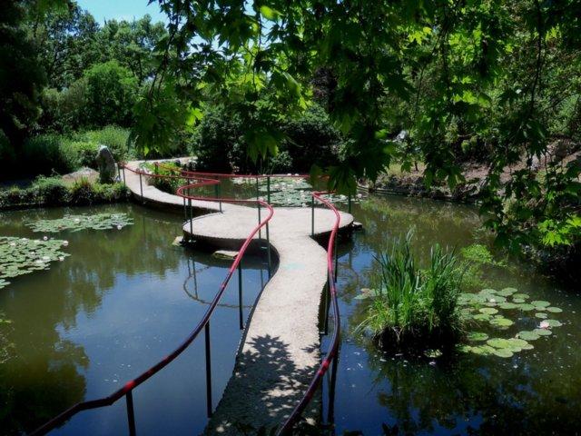 Парк Форос Крым