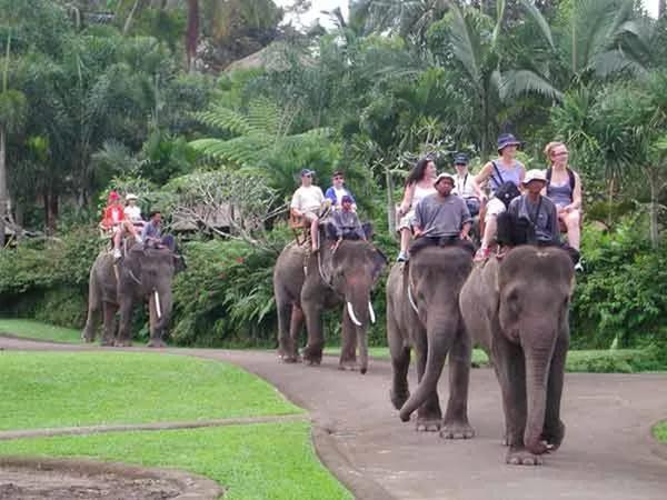 Как активно провести отпуск в Таиланде? Другие страны.