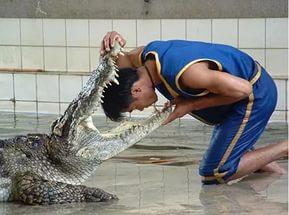 Почему Таиланд пользуется такой популярностью среди туристов? Другие страны.