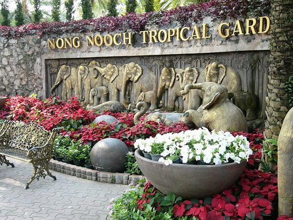 Все о парке Нонг Нуч в Паттайе. Таиланд