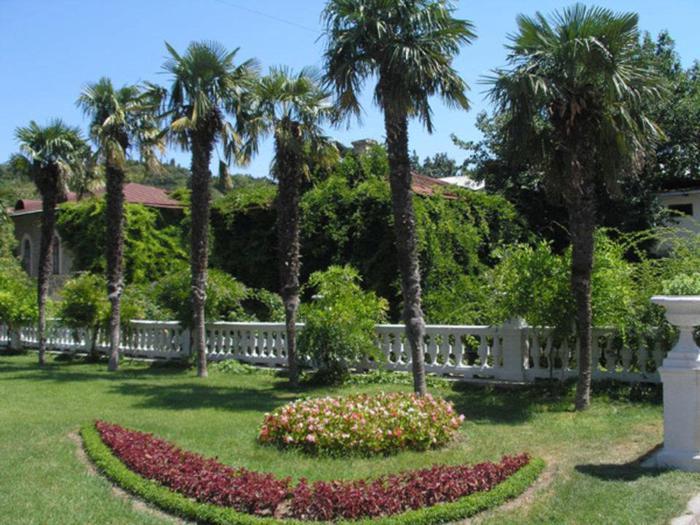 Крым. Никитский Ботанический сад.
